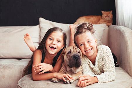 Pets dentro de casa, organização e higiene harmonizam a convivência